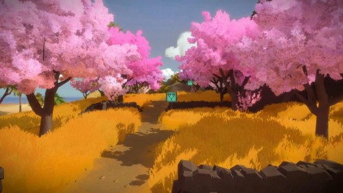 The Witness cherry blossoms